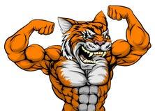 Tygrysia mężczyzna maskotka Fotografia Royalty Free