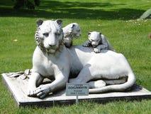 Tygrysia rzeźba zdjęcia royalty free