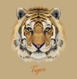Tygrysia zwierzęca twarz Wektorowy Bengalia głowy portret Realistyczna futerkowa bestia tygrys Drapieżników oczy żbik Dużego kota ilustracji