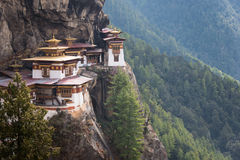 Tygrysy gniazdują monaster w Bhutan Obraz Royalty Free