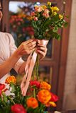 Tying up roses Stock Image