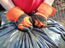 Tying Up Yard Bags. This is an image of a man tying up yard bags while doing yard clean up. He is wearing two orange and black, cloth and leather work gloves stock image
