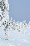 Tykky en Finlande Image libre de droits