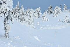 Tykky in Finnland stockbild