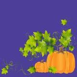 Tykovok λίγη οικογένεια με τα πράσινα φύλλα Στοκ Εικόνα