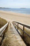Tylösand海滩向海滩的木道路 免版税库存照片
