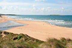 Tylösand海滩瑞典-一个显耀的沙子海滩 免版税库存照片