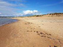 Tylösand beach, Sweden, when all the tourists have left. Tylösand beach, Sweden, is famous for its golden sand and clear water but at the end of August it& Royalty Free Stock Photos