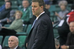 Tyler Geving Head Basketball Coach Royalty Free Stock Image