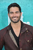 Tyler Hoechlin Royalty Free Stock Photo