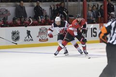Tyler Randell του Ottawa Senators Στοκ φωτογραφία με δικαίωμα ελεύθερης χρήσης