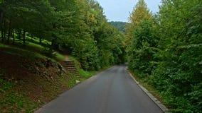 Tylna droga przez drewien w Chorwacja europejczycy zdjęcie wideo