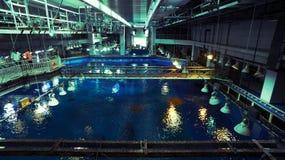 Tylna strona akwarium Zdjęcia Stock
