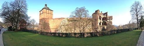 Tylna strona Heidelberg kasztel Zdjęcia Stock