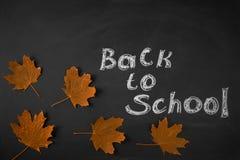 tylna szkoły Rysunkowa kreda na blackboard jesieni liściach obraz royalty free