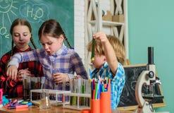 tylna szko?y edukacyjny dziecko naukowowie robi eksperymentom w laboratorium Ucznie w chemii klasie szko?a obraz royalty free