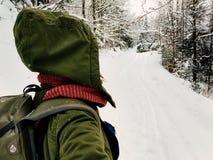 Tylna widok kobieta chodzi samotnie w śnieżnym lesie fotografia royalty free