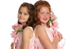 tylne krajobrazowe siostry. Obrazy Royalty Free