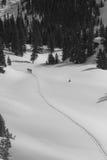 tylnego kraju lasu target2029_0_ narciarki Zdjęcia Stock