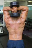 Tylni widok bez koszuli mięśniowy mężczyzna ćwiczy z dumbbell Obraz Royalty Free