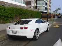 Tylni widok biały kolor Chevrolet Camaro SS Fotografia Stock