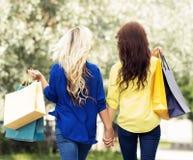 Tylni widok blondynów i brunetki mienia chodzące ręki fotografia stock