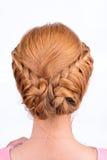 Tylni widok fryzura od pigtails Fotografia Stock