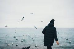 Tylni widok młodej modniś kobiety żywieniowi seagulls zdjęcia stock