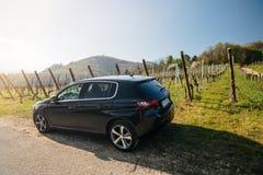 Tylni widok nowy Peugeot 306 samochód parkował wiejską drogę fotografia royalty free