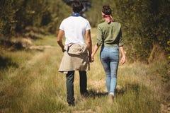 Tylni widok pary odprowadzenie przy oliwki gospodarstwem rolnym Fotografia Royalty Free