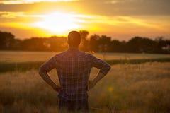 Tylni widok rolnik w polu przy zmierzchem Obraz Royalty Free
