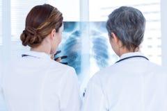 Tylni widok skoncentrowani medyczni koledzy egzamininuje promieniowanie rentgenowskie wpólnie zdjęcia stock