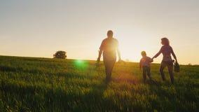 Tylni widok: Życzliwa rodzina z młodym synem iść zasadzać drzewa Niesie rozsady, łopaty i podlewanie puszki, zbiory