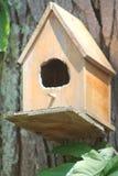 tylny ptasi błękitny koloru obwieszenia domu czerwieni usa biel jard Zdjęcia Stock