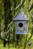 tylny ptasi błękitny koloru obwieszenia domu czerwieni usa biel jard Fotografia Royalty Free