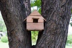 tylny ptasi błękitny koloru obwieszenia domu czerwieni usa biel jard obrazy stock