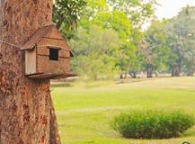 tylny ptasi błękitny koloru obwieszenia domu czerwieni usa biel jard Obrazy Royalty Free