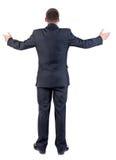 Tylny widok biznesowy mężczyzna Zdjęcie Stock