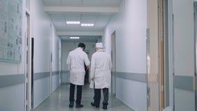 Tylny widok dwa lekarki chodzi na szpitalnym ` s korytarzu i radzić zdjęcie wideo
