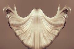 tylny widok dziewczyna z pięknym długim blondynka włosy obraz royalty free