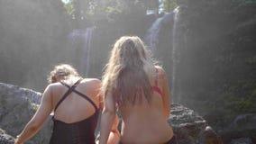 Tylny widok dziewczyny w bikini zbiory wideo