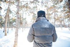 Tylny widok mężczyzna odprowadzenie w zima parku Zdjęcia Royalty Free