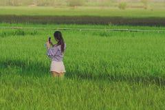 Tylny widok młoda kobieta bierze fotografię smartphone w ryż fotografia royalty free