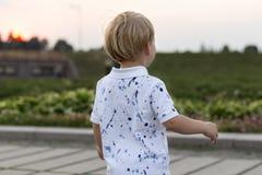 Tylny widok na ślicznej małej berbeć chłopiec w parku na zmierzchu na letnim dniu obrazy royalty free