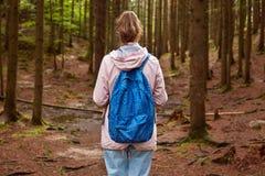 Tylny widok szczupły sportowy turystyczny wycieczkowicz dziewczyny withblue plecaka odprowadzenie przez halnej sosny lasowej kobi zdjęcie royalty free