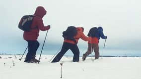 Tylny widok trzy turystycznego wycieczkowicza z trekking słupami, plecakiem i karplami, Szczęśliwa wycieczkowicz grupa z plecakie zdjęcie wideo