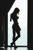 Tylny widok zmysłowa piękna młoda żeńska sylwetka Zdjęcie Stock