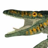 Tylosaurus gada Morska głowa Zdjęcie Royalty Free