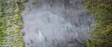 Tymiankowi i rozmarynowi sprigs na drylują stołowego szerokiego ekran Zdjęcie Stock