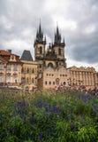 Tyn教会和布拉格建筑学与花 免版税库存照片